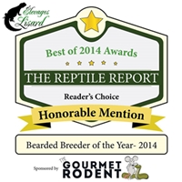 Elevages Lisard_Reader's Choice Honorable Mention_Bearded Dragon Breeder of the Year 2014