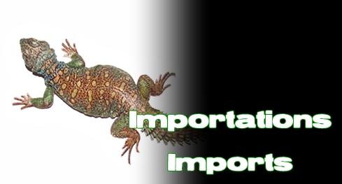 Élevages Lisard - Importations / Imports