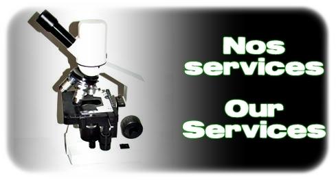 Élevages Lisard - Nos services / Our Services