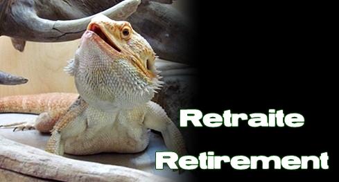 Élevages Lisard - Retraites / Retirements