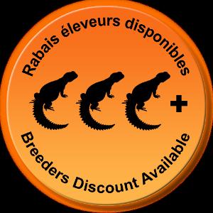 Élevages Lisard - Rabais éleveurs disponibles / Breeders Discount Available